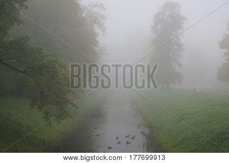 Autumn foggy morning in the Alexander Park in Tsarskoe Selo