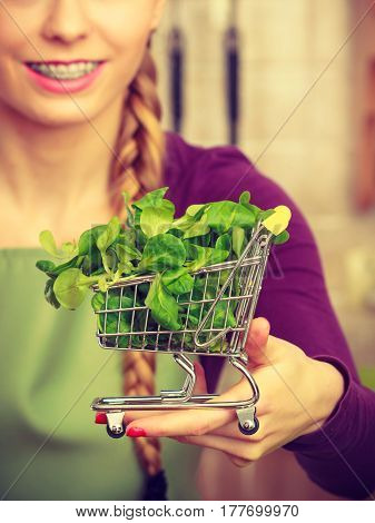 Woman Holding Shopping Cart With Basil Inside