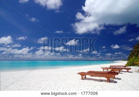 Canvas Chairs On Tropical Beach