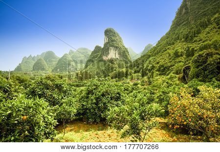view on Karst landscape in yangshuo china