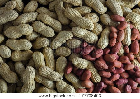 Raw peanuts in their shells an without shells