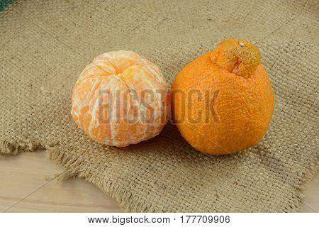 Sweet seedless peeled and unpeeled Dekopon mandarin oranges on burlap