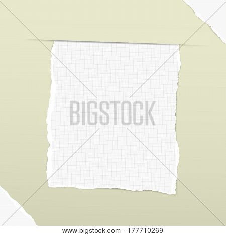Pieces of torn white squared note, copybook, notebook sheet inserted into green background with white ripped paper in corners.