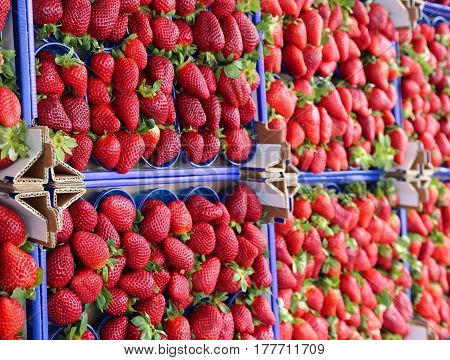Red Strawberries For Sale In A Fruit And Vegetable Shop