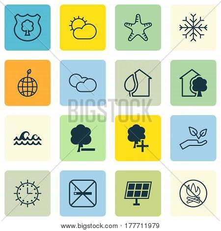 Set Of 16 Eco Icons. Includes Home, Sun Power, Insert Woods And Other Symbols. Beautiful Design Elements.