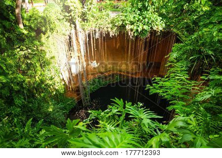Mysterious Ik-Kil cenote with hanging roots near Chichen Itza in Mexico