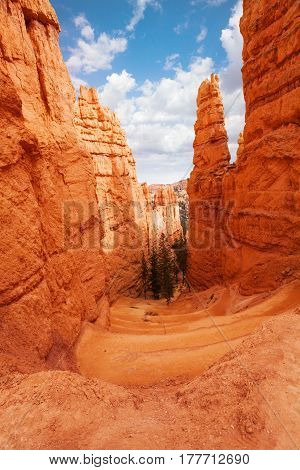 The gorge through the high sandstone peaks of Bryce Canyon National Park mountains in Utah, USA