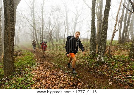 Hikers walk on a foggy forest trail in the mountains