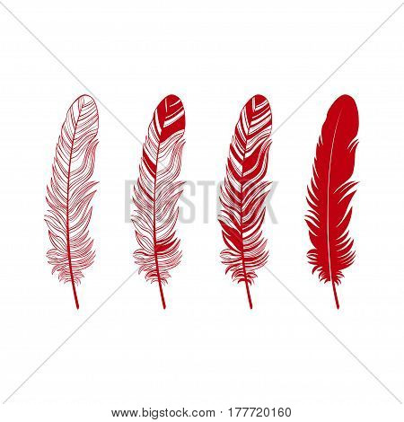 Feather set. Red feathers isolated on white.