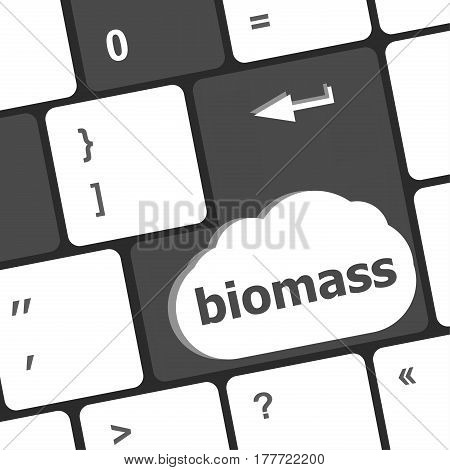 Keyboard Keys With Biomass Word Button On It