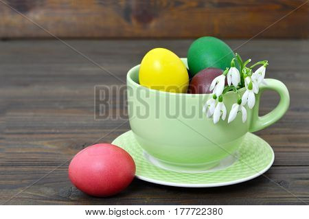 Easter card with Easter eggs in the cup and spring flowers in eggshell