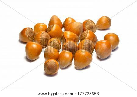 Vegan organic hazelnut isolated on white background