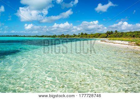 Stunning Caribbean Landscape