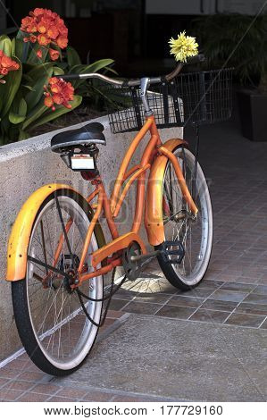 Orange Two Wheel Bicycle Leaning on A Wall