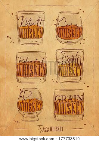 Poster types of whiskey with glasses lettering malt corn grain blended single post still rye in vintage style drawing on craft background
