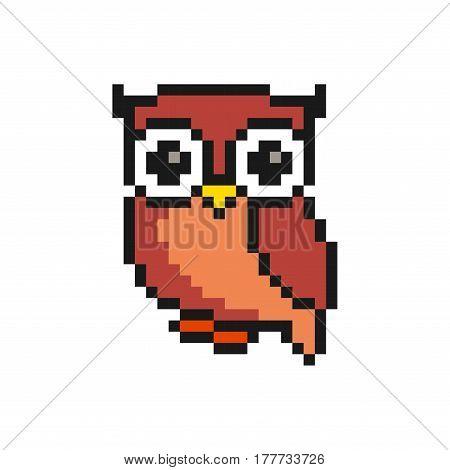 isolated vector illustration Cute bird animal pixelated owl