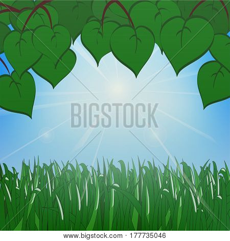 Green Grass And Leaves On The Background Of A Sunny Sky