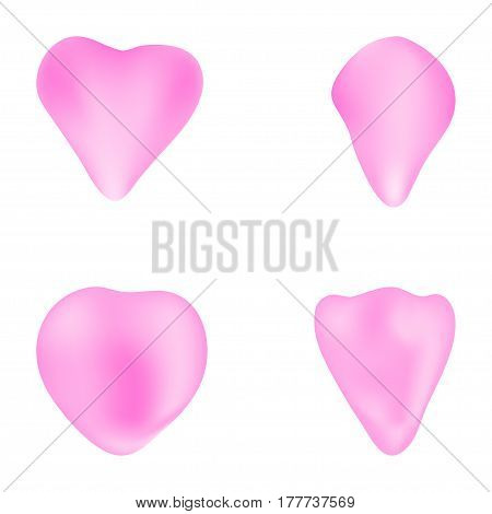 Delicate floral petals on a white background