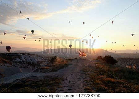 Travel To Goreme, Cappadocia, Turkey. The Sunrise In The Mountains With A Lot Of Air Hot Balloons In