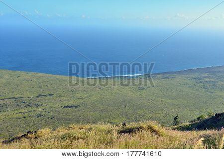 Pacific Ocean Coastline Of Old Lava In Volcano National Park, Big Island Of Hawaii