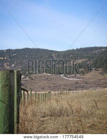 Closeup of green wooden fence posts along grass field in spring with road and forest hills background.
