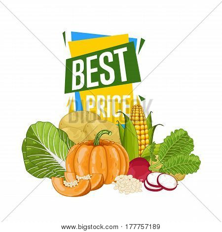 Best price discount poster with vegetable vector illustration. Natural product shop, locally grown, vegetarian nutrition offer, organic healthy food retail poster with radish, potato, pumpkin, cabbage