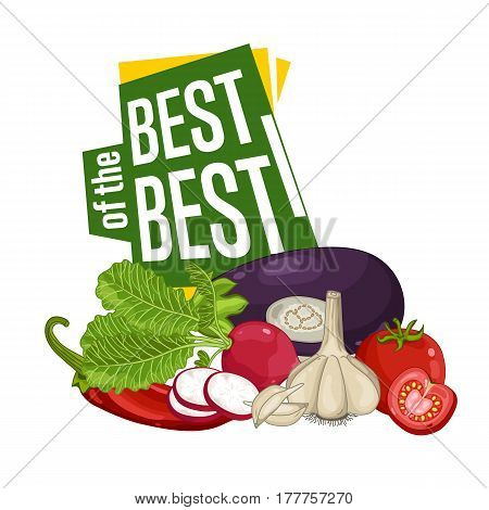 Best discount poster with fresh vegetable vector illustration. Natural product shop, locally grown, vegetarian nutrition offer, organic healthy food retail poster with tomato, garlic, eggplant, radish