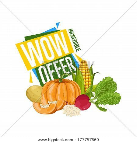 WOW offer discount poster with vegetable vector illustration. Natural product shop, locally grown, vegetarian nutrition promo, organic healthy food retail poster with radish, potato, pumpkin, corn