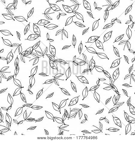 Black and white seamless pattern of falling leaves. Natural background. Vector