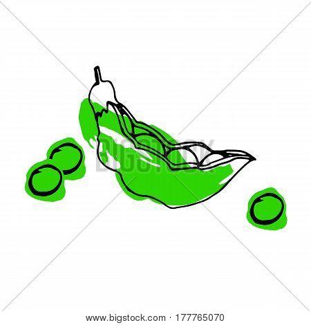 illustration, food, pea, pod, green, vector, organic, healthy, ingredient