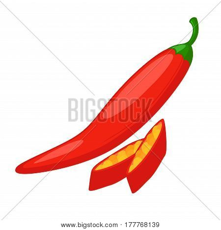 Vector stock of fresh chili herbs spice in whole and sliced