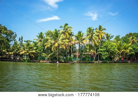 Panoramic View With Coconut Trees And Fisherman House, Backwaters Landscape Of Alleppey