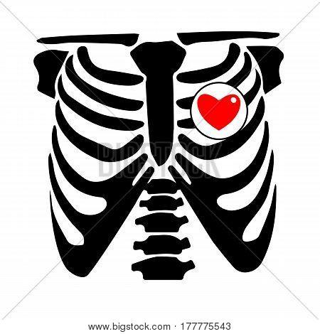 chest, rib, vector, skeleton, heart, bone, illustration, ray, xray, film