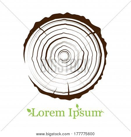 cross section of the trunk with tree rings. Wood sign icon. Tree growth rings. Tree trunk cross-section. flat icon. Vector illustration. Logo.