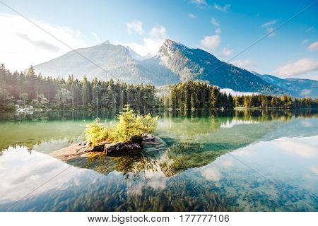 Famous tourist attraction of calm lake Hintersee. Picturesque day scene. Location resort Ramsau, National park Berchtesgadener Land, Upper Bavaria, Germany Alps, Europe. Discover the world of beauty.