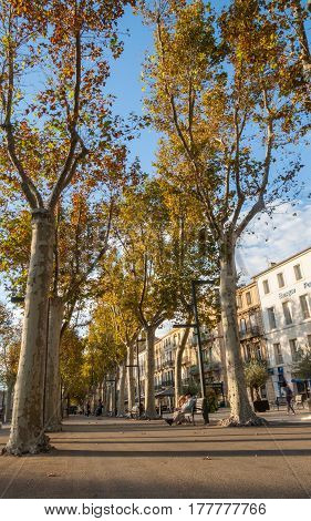 Narbonne, France - October 8, 2016; Urban streets, scenes and architecture tree lined promenade Cours de la Rpublique with elderly couple on seat