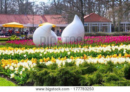 Lisse, Netherlands - April 4, 2016: Colorful tulip flowerbeds in Keukenhof spring garden, Holland
