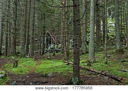 Picturesque shelter in the green forest coniferous, Rila mountain, Bulgaria