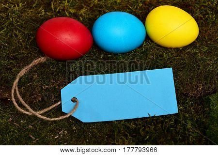 Painted Easter Colorful Eggs With Shopping Tag On Green Moss
