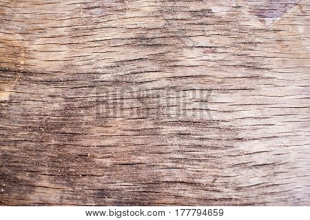 Old grey wooden board texture back ground