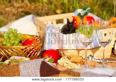 Fruit basket and wine on the green grass. Picnic theme.