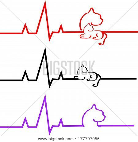 ECG with cat on white background. Vector illustration.