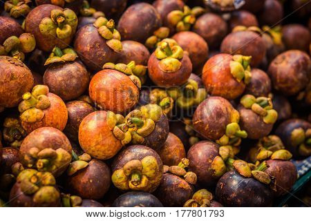 Mangosteen for sale, mangosteen fruit, exotic mangosteen in the market