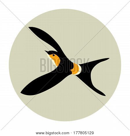 swallow vector illustration style Flat side profile