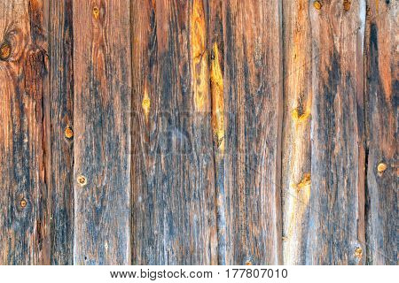 old wood background texture. vintage wood background texture with knots and nail holes