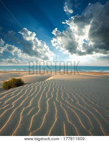 Dunes of sandy beach on the background of sea and dawn sky
