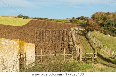 Partly ploughed field on the South Downs near Shoreham in West Sussex England. With wall and footpath and tractor