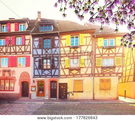 half timbered houses of Colmar, beautiful town of Alsace at spring, France