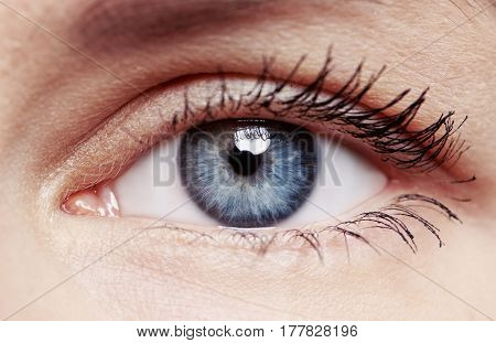 Closeup of young woman's healthy eye. Ophthalmology, eye care, vision exam and sight problems concept.