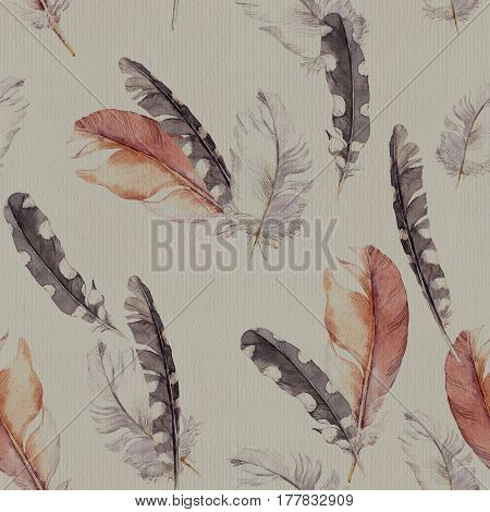 Feathers design. Seamless pattern. Gray paper background